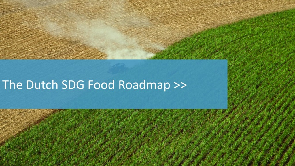 Dutch SDG roadmap banner