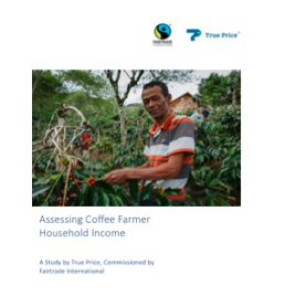 Assessing Coffee Farmer Household Income