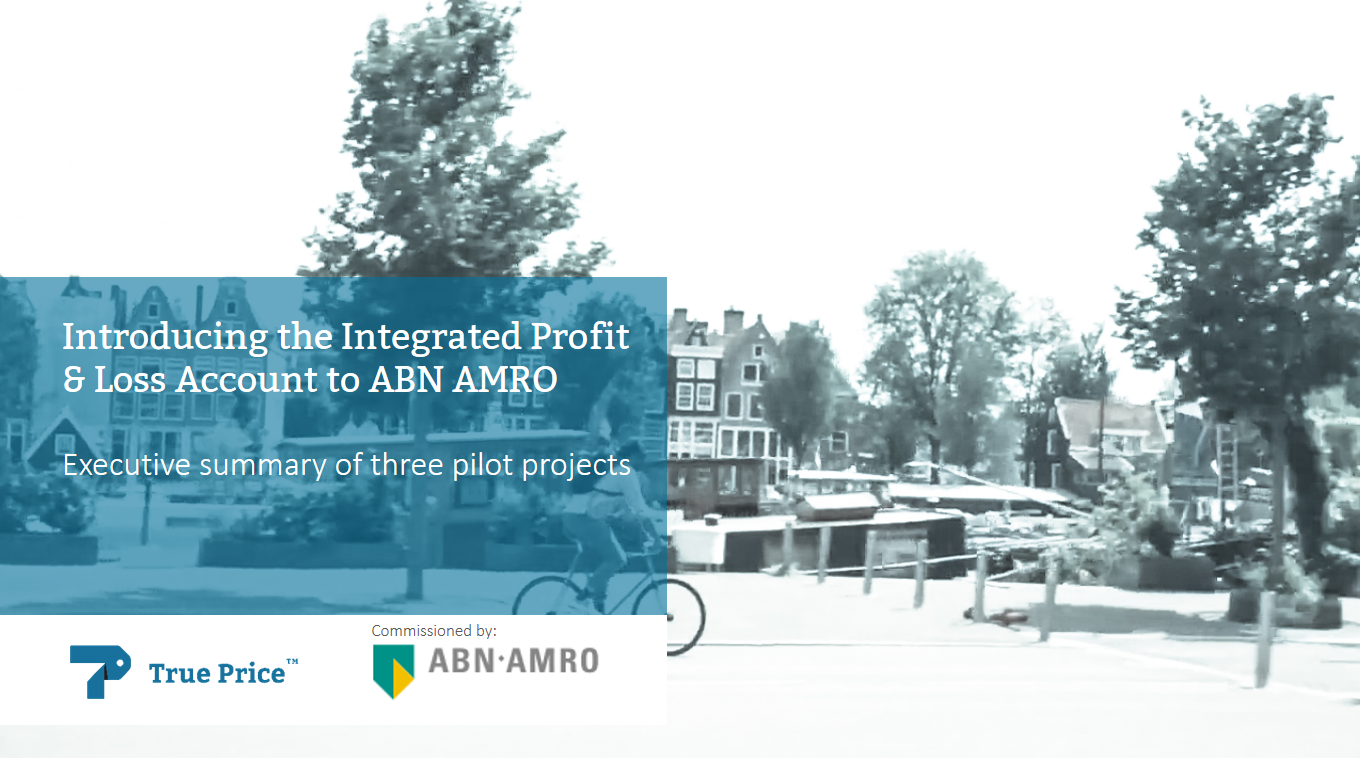 Introducing the IP&L Account to ABN AMRO