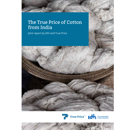 The True Price of Cotton from India